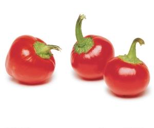 بذر فلفل گیلاسی قرمز تند