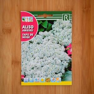 بذر گل آلیسوم سفید