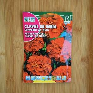 بذر گل جعفری کوتوله ی گل درشت نارنجی