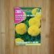 بذر گل جعفری مکزیکی گل درشت زرد طلایی
