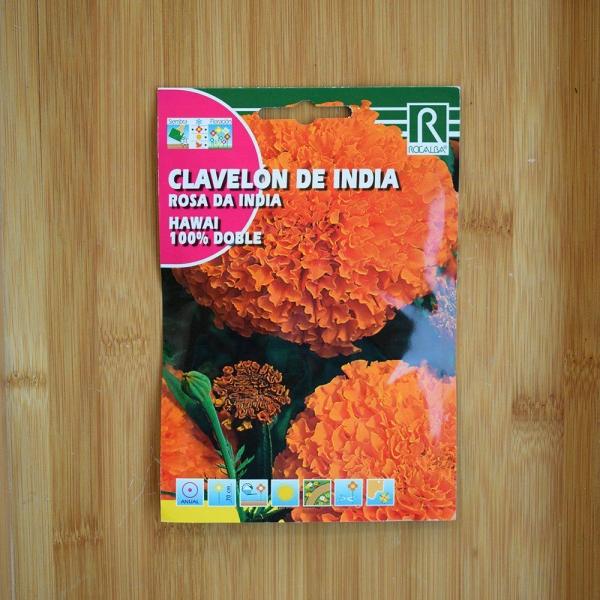 بذر گل جعفری مکزیکی گل درشت نارنجی