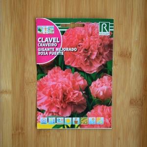 بذر گل میخک گل درشت صورتی