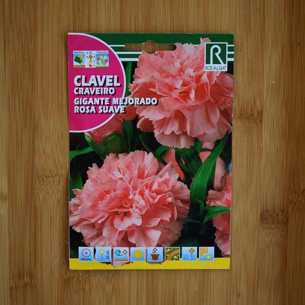 بذر گل میخک گل درشت صورتی کدر