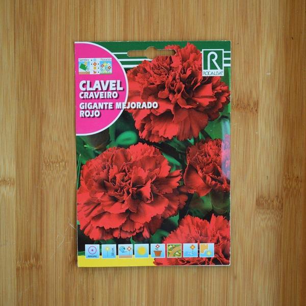 بذر گل میخک گل درشت سرخ