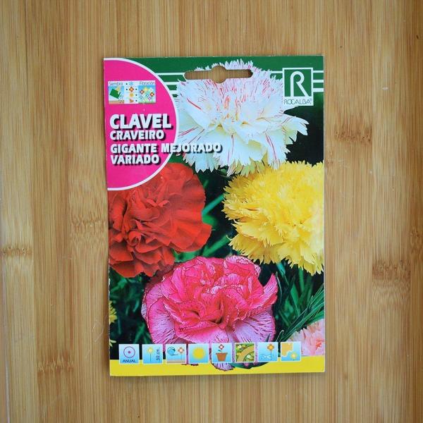 بذر گل میخک گل درشت چند رنگ