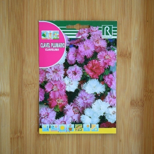 بذر گل میخک میکس پلوماریس