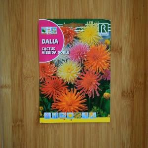 بذر گل کوکب کاکتوس هیبریدی چند رنگ