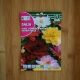 بذر گل کوکب پا کوتای هیبریدی چند رنگ