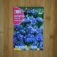 بذر گل زنبوری یا لیمونیوم آبی