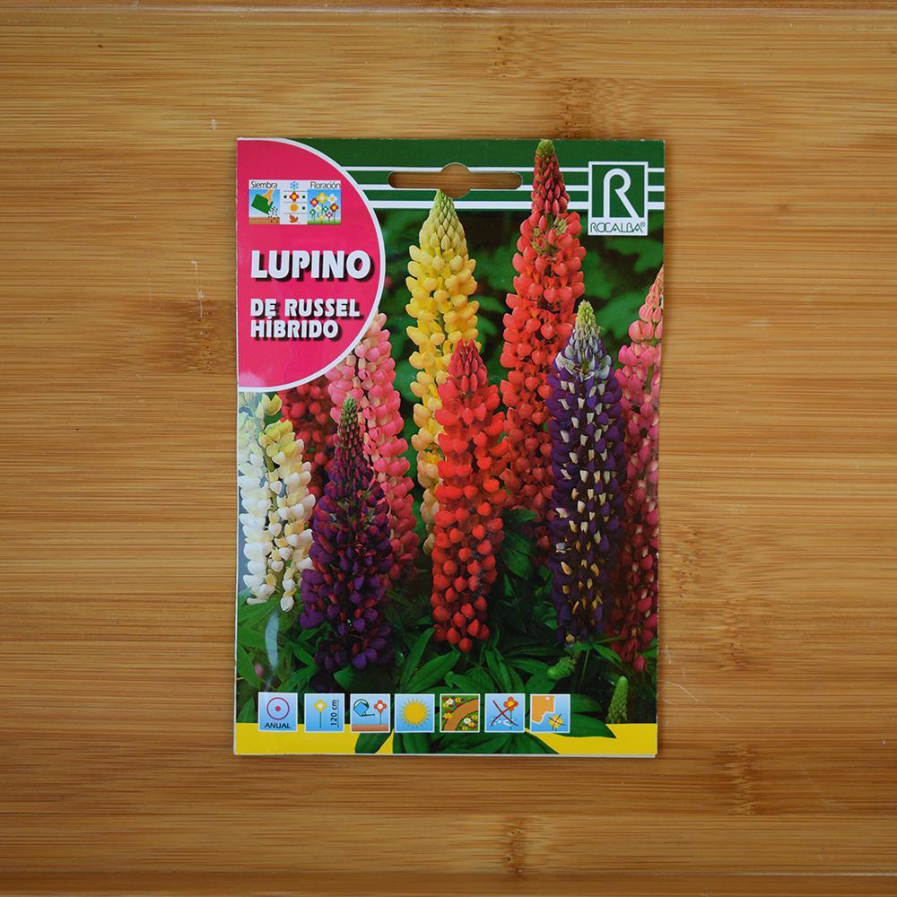 بذر گل لوپن (طاووسی)