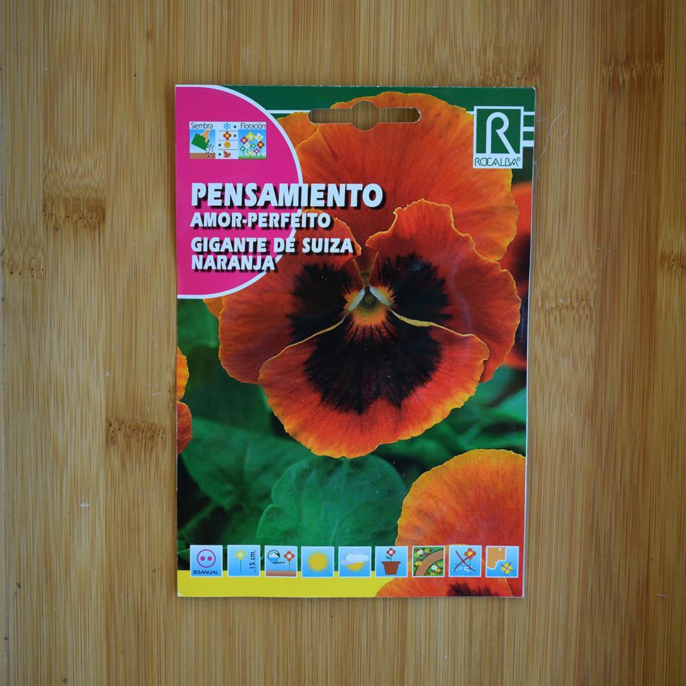 بذر گل بنفشه نارنجیمشکی