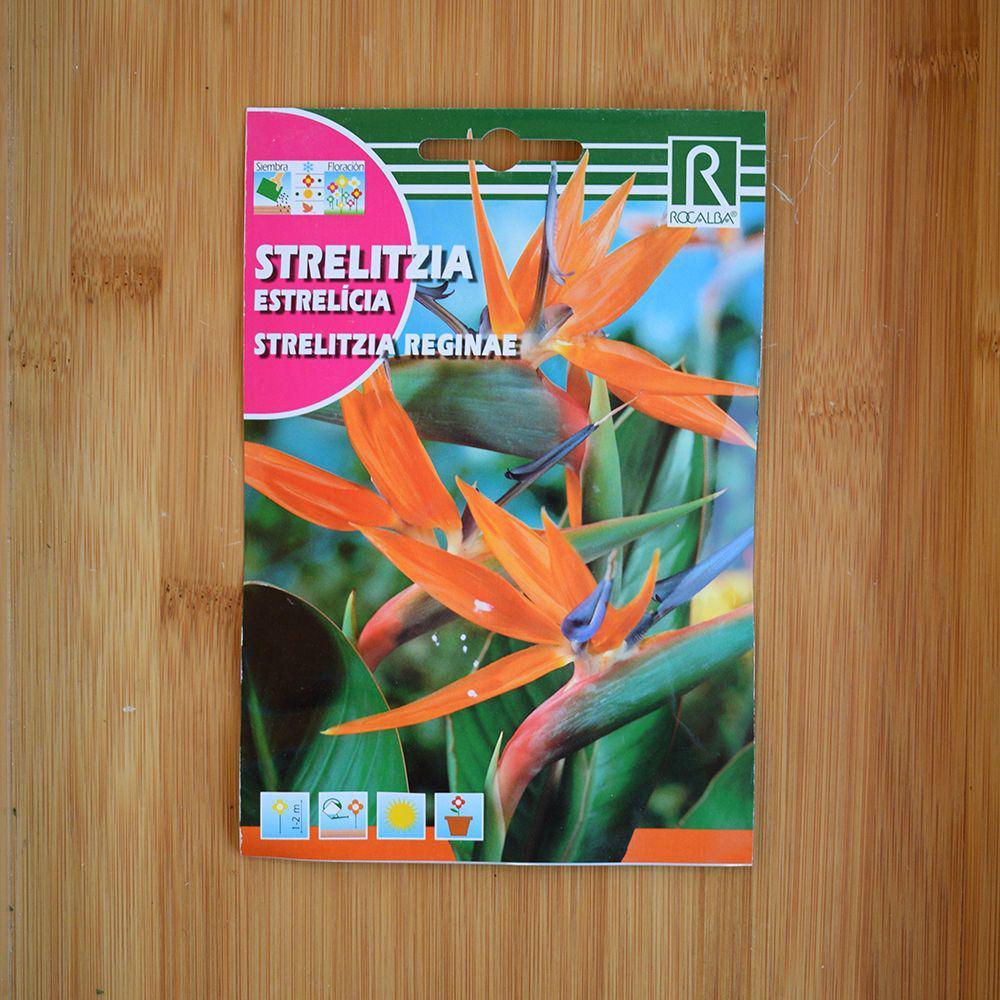 بذر کمیاب استرلیتزیا گل نارنجی یا پرنده بهشتی