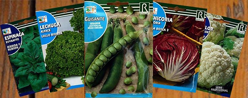 بذر سبزیجات ، از خرید بذر تا پرورش سبزی