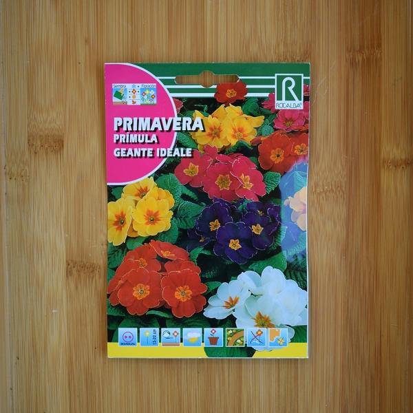 بذر گل پامچال میکس چند رنگ