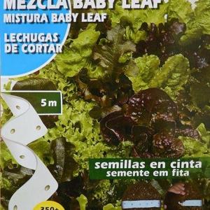 بذر نواری بیبی کاهو لولا روزا میکس سبز و قرمز چهار فصل