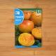 بذر گوجه آناناسی