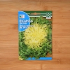 بذر کاسنی فرنگی سبز لولا روزا