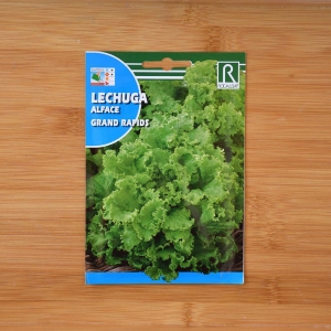 بذر کاهو سبز برگ دالبُری