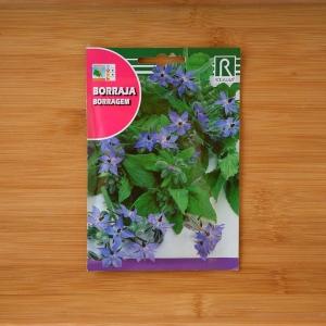 بذر گل گاوزبان اروپایی