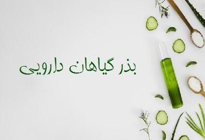 بذر گیاهان دارویی ، فروش بذر گل و گیاه