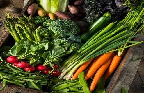 بذر سبزیجات ارگانیک و خارجی