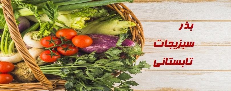 بذر سبزیجات تابستانی