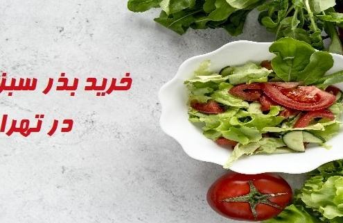 خرید بذر سبزیجات در تهران