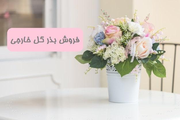 فروش بذر گل خارجی