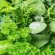 بذر سبزیجات معطر