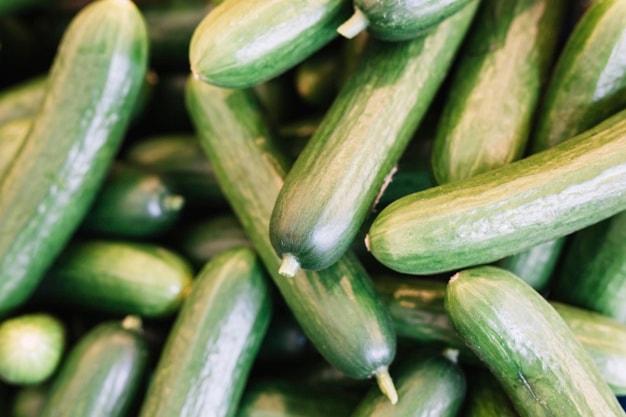 فروش اینترنتی بذر خیار در روکالبا