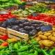 بذر سبزیجات در تهران