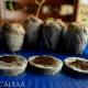 آموزش کاشت بذر خیار سفید