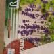 آموزش کاشت بذر اسطوخودوس