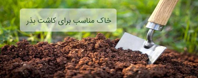 خاک مناسب برای کاشت بذر