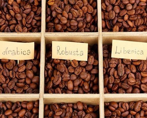 انواع مختلف قهوه در جهان