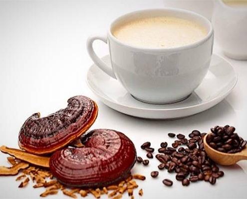 خواص درمانی قهوه گانودرما