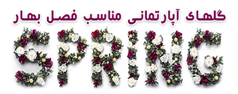 گلهای بهاری آپارتمانی