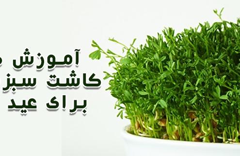 سبزه عید با عدس