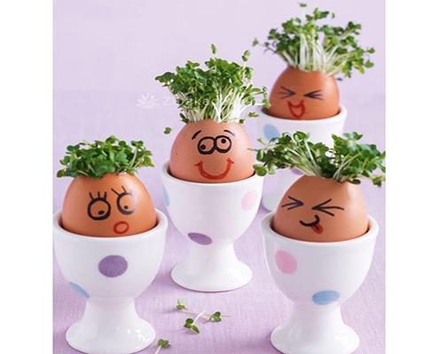 تزیین سبزه عید با تخم مرغ
