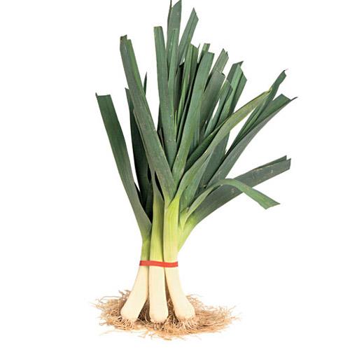 تره فرنگی سبزیجات مناسب کاشت در پاییز