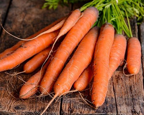 هویج سبزیجات مناسب برای کاشت در پاییز